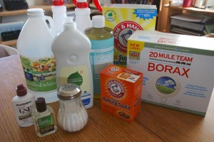 Quick Overview of the Natural Cleaners